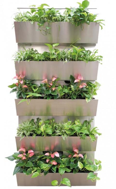 gkr hydrokulturen begr nungen mietpflanzen pflanzsysteme. Black Bedroom Furniture Sets. Home Design Ideas