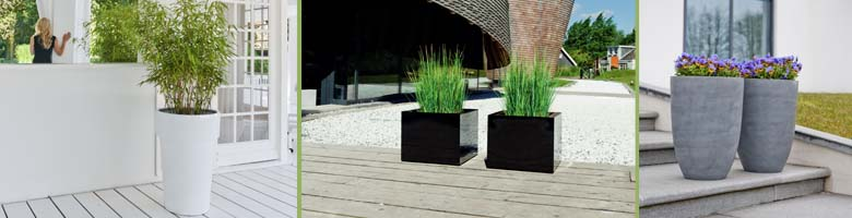 Begrünung für Terrassen, Balkone und den Garten von GKR