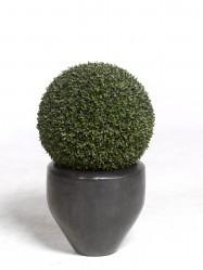 Textilpflanzen Und Kunststoffpflanzen Preiswert Kaufen