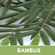 GKR Kunstpflanzen Bambus QU