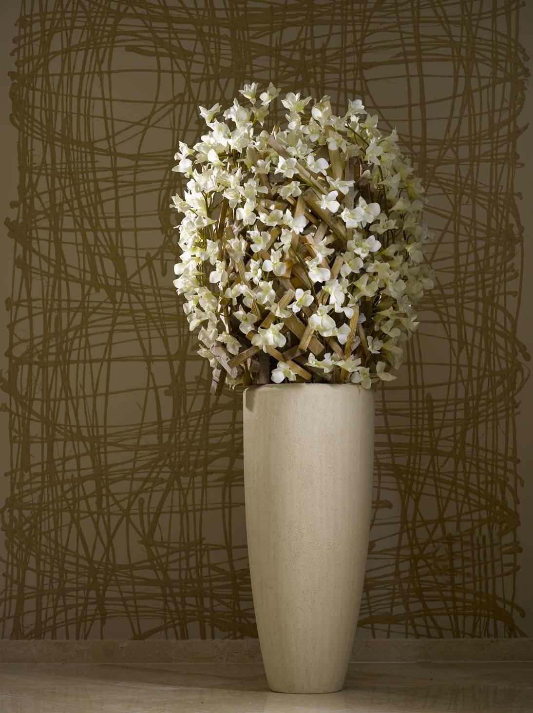 Orchideen die edel anmutende und dekorative pflanzenfamilie for Hydrokulturpflanzen shop