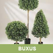GKR_Kunstpflanzen_Buxus_Quadrat
