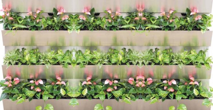 Grüne Wand für alle Pflanzen und jeden Standort
