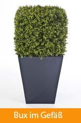 Kunststoffpflanzen_QU 03