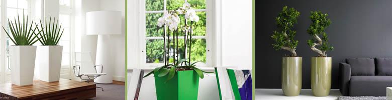 Einsatz für Pflanzgefäße, Vasen, Schalen – Topf in Topf