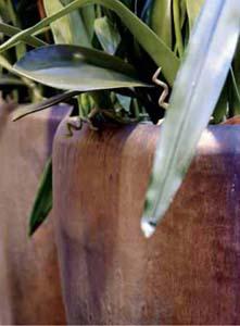 Sepia Keramik